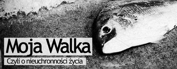 Bombla_MojaWalka