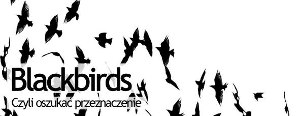 Bombla_Blackbirds