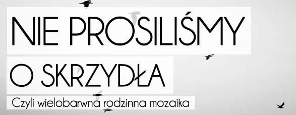 bombla_nieprosilismy